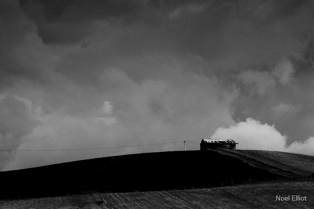 Old Shed - Tasmania by Noel Elliot