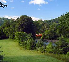 Railroad Bridge over Williams River by Judith Winde