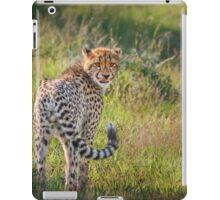 Lick of Curiosity iPad Case/Skin