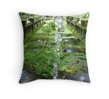 The other side of the pond Paronella Park Queensland Throw Pillow