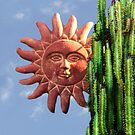 Sun Behind The Cactus  by Heather Friedman