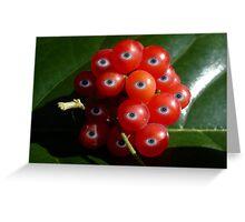 Eye Fruit Greeting Card