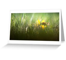 Splendour in the grass... Greeting Card