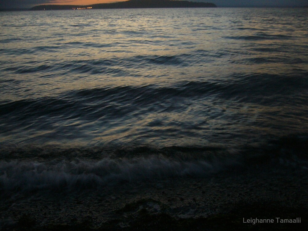 Movement of the Puget Sound by Leighanne Tamaalii