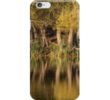 Autumn reflections in water iPhone Case/Skin