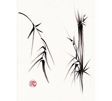 """Tao"" Original sumi-e brush painting on paper. Photographic Print"