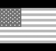 American Flag, Stars & Stripes IN GREY; USA, America, Pure & Simple by TOM HILL - Designer