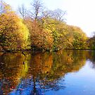 Autumn Reflection by Andy Harris