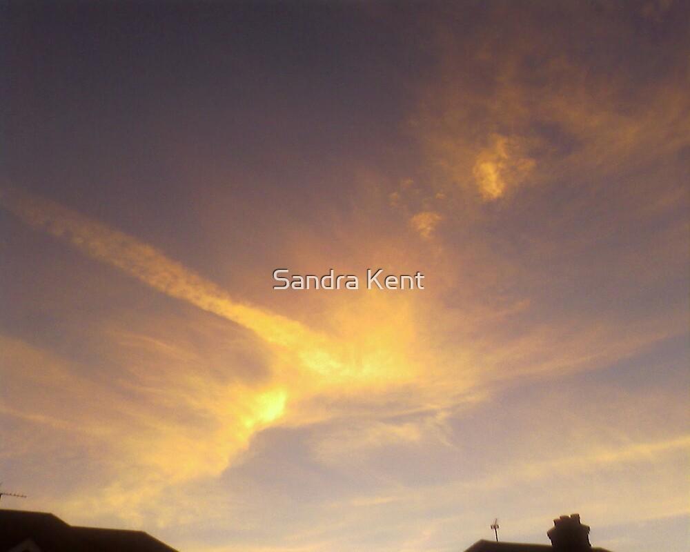 Winter Sun by Sandra Kent
