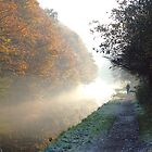 Mist and frost along the Calderdale Canal by daimonic
