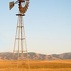 Wild West Windmills by Carolyn  Farmer