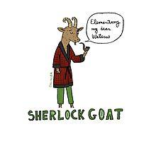 Sherlock Goat -- Elementary My Dear Watson Photographic Print