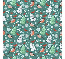 Winter birds blue pattern Photographic Print
