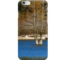 Driftwood iPhone Case/Skin