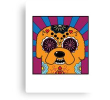Jake's time of Adventure Canvas Print