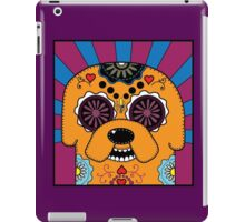 Jake's time of Adventure iPad Case/Skin