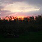 Sunset from my backyard by VCorb0328