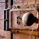The Door by Naomi Frost
