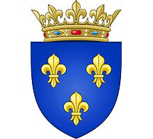 Royal French Coat of Arms, 1376–1515 Photographic Print