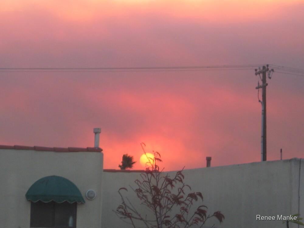 Firey Sky by Renee Manke