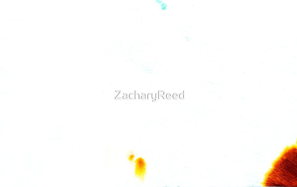 00049 by ZacharyReed