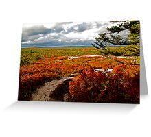 Path to Nowhere Greeting Card