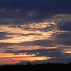 Fire in the Sky by Martha Medford