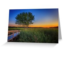 Green of Summer Moon Setting Greeting Card