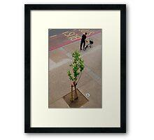 Folding Bike and Tree Framed Print