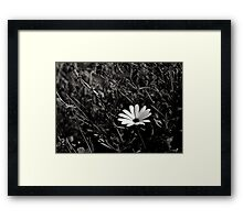 individualism Framed Print