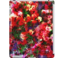 Esplendido iPad Case/Skin