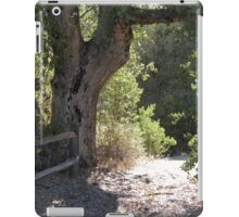 Path to Green Valley iPad Case/Skin