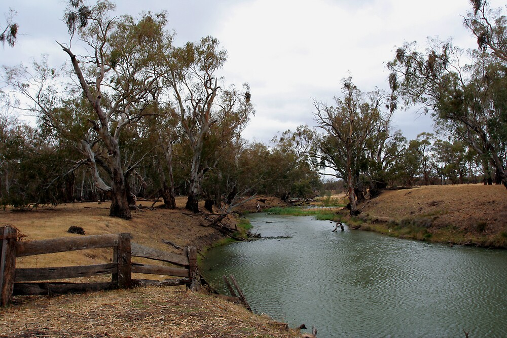 Lachlan River by Lindsay Knowles