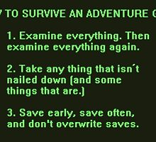 The Rules to Surving an Adventure Game by skunkrocker