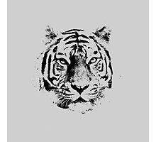 Tiger 2 Photographic Print