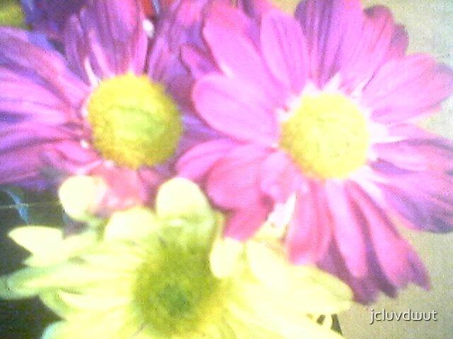 Pretty Flowers by jcluvdwut