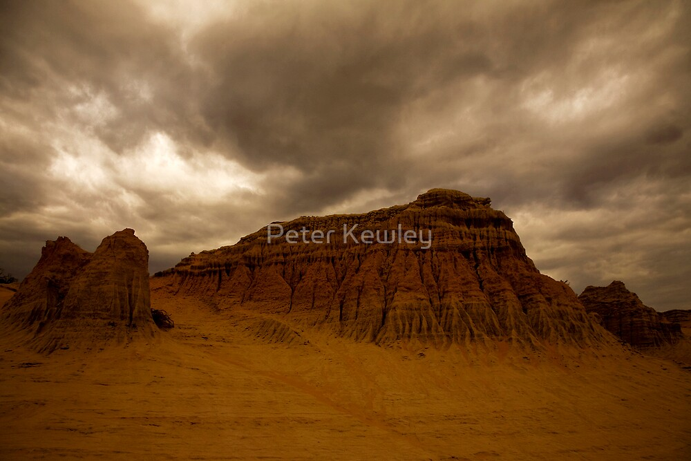 Mungo by Peter Kewley