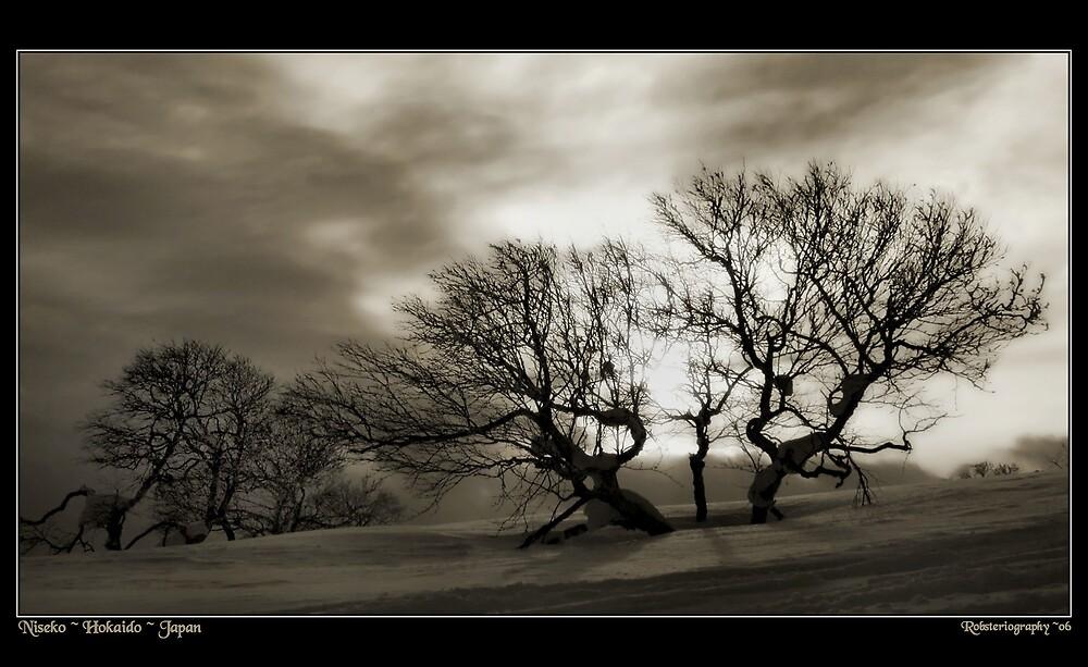 Niseko Powder Fields by Robert Mullner