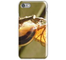 Autumn Gold iPhone Case/Skin