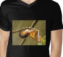 Autumn Gold Mens V-Neck T-Shirt