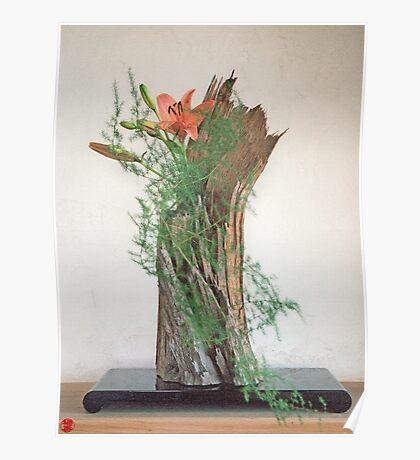 Ikebana-034 Poster