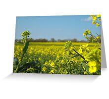 Yellow field (close) Greeting Card