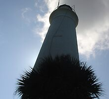 Tallahassee lighthouse2 by Raymond Desjardin