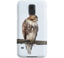Red-tailed Hawk - Perched Samsung Galaxy Case/Skin