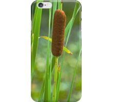 Cattail iPhone Case/Skin