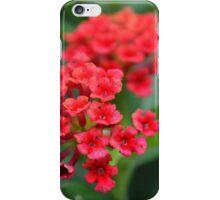 Crimson kisses iPhone Case/Skin