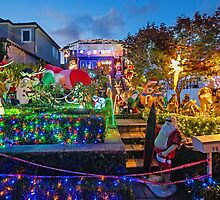 Light Up Lane Cove for Christmas by TonyCrehan