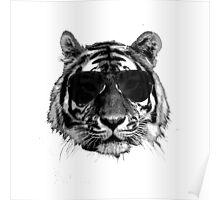 Tiger 3 Poster