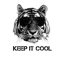 Keep it cool tiger Photographic Print