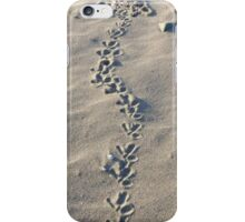 Oystercatcher tracks in the sand iPhone Case/Skin